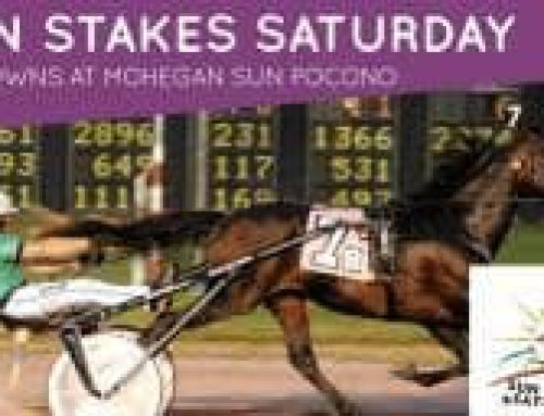 Sun Stakes Saturday includes big showdown in Franklin Championship
