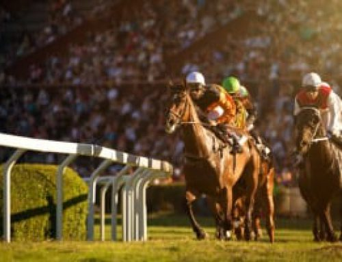 How To Bet On Horses: Different Types Of Horse Racing Bets