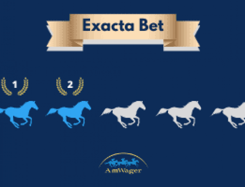 What Is An Exacta Bet & How To Calculate Your Payout