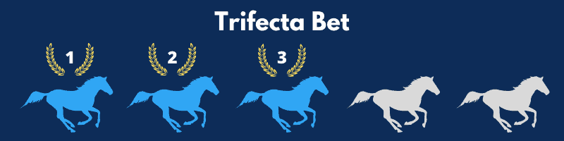 A Trifecta Bet is when the bettor selects the first, second, and third places finishers in exact order.