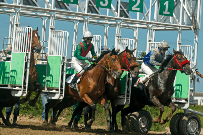 A Trifecta bet is a form of pari-mutuel wagering which means that payouts are calculated based on the share of a betting pool.
