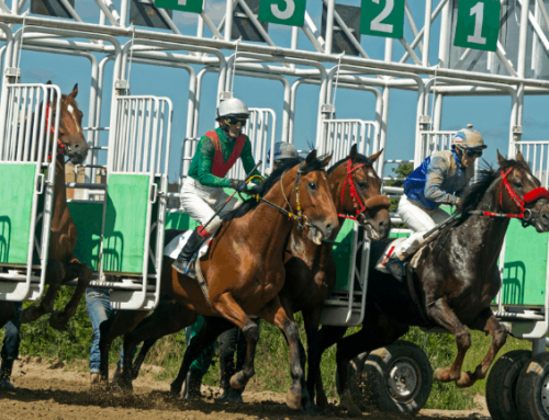 Key Horse Races & Expert Handicapper Bets – March 6, 2021