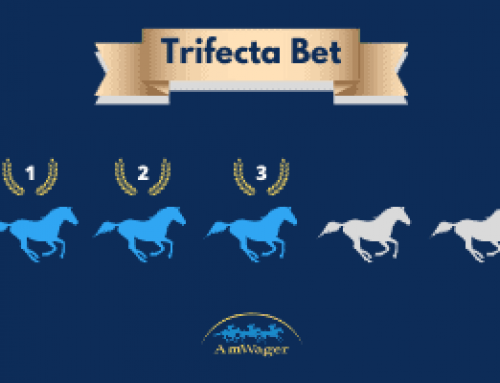 What Is A Trifecta Bet & How to Calculate Your Payout