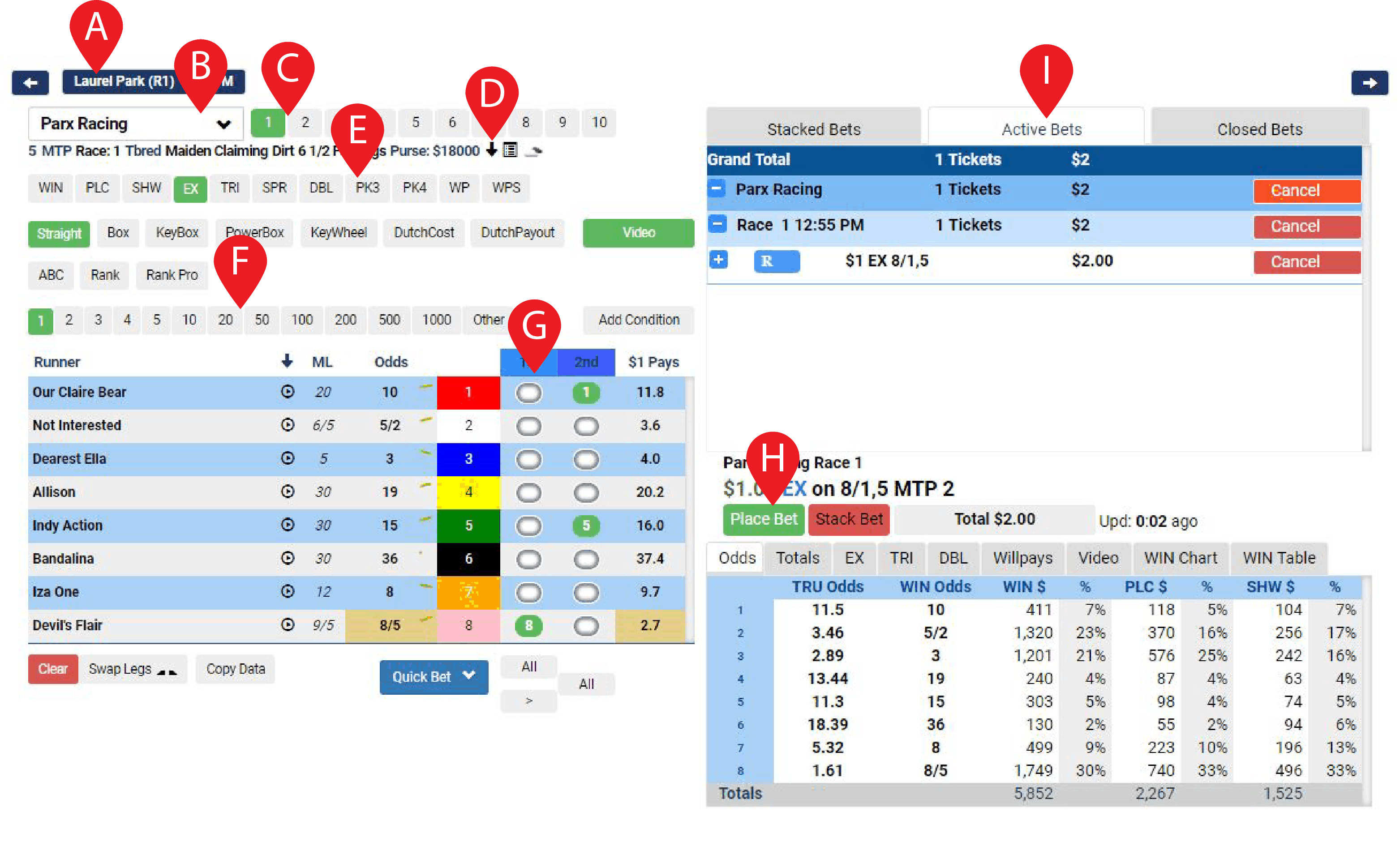 Basic Betting How To