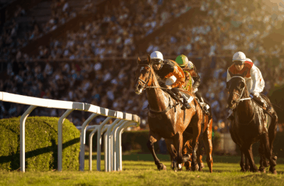 Knowing how to bet on horses can give you an advantage on race day.