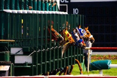 To bet correctly, you need to know how to read a horse racing program.