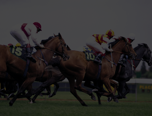 Key Horse Races & Expert Handicapper Bets – February 20, 2021