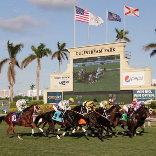 Key Horse Races & Expert Handicapper Bets – February 27, 2021