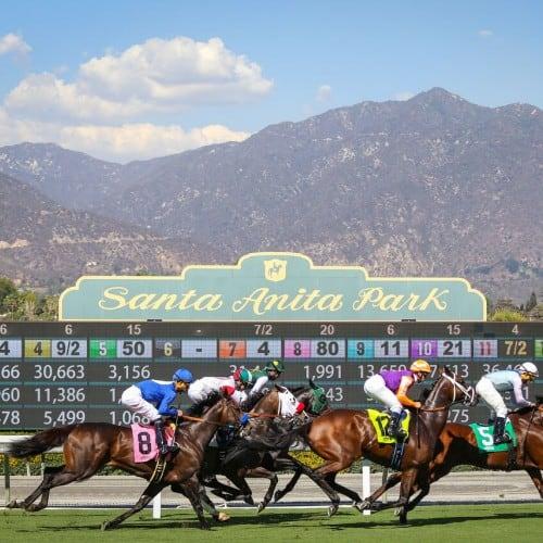Key Horse Races & Expert Handicapper Bets – June 19, 2021